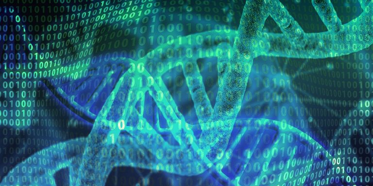 DNA Fitness – What Effect Will This Highly Specific Fitness Regime Have On Your Body?